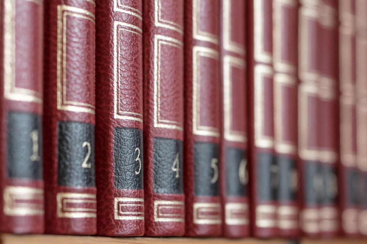 Dictionnaire de l'investisseur